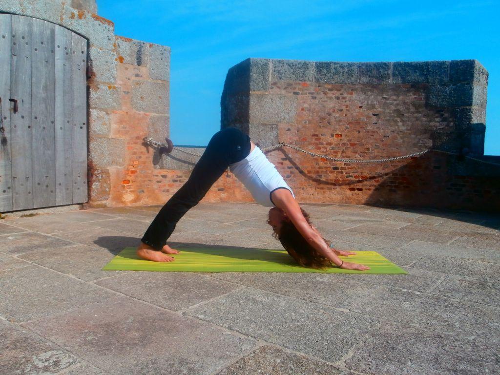 hatha yoga posture adho mukha svanasana - 3