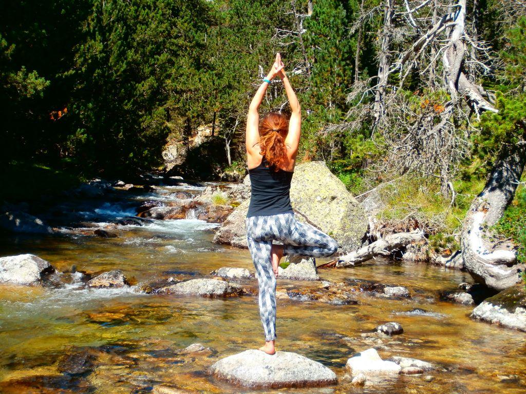 hatha yoga posture vrikshasana - 3