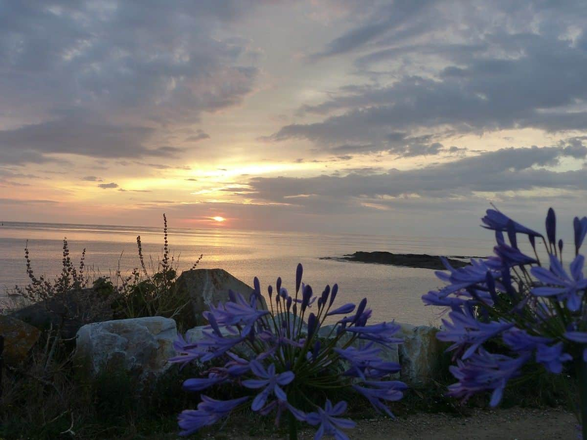 stage hatha yoga nord cotentin juillet 2018 - 3