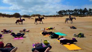8 membres yoga pratyara - 2
