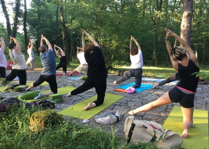 Cours de Hatha yoga et yin yoga