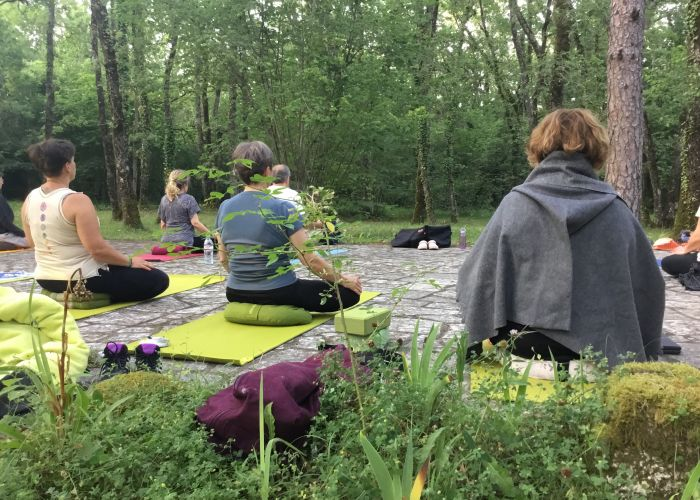 Stage de yoga champêtre yang \ yin en forêt