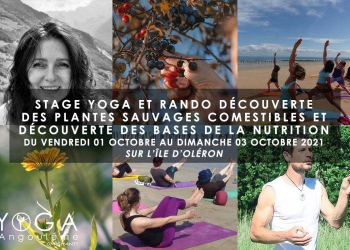 Stage yoga et rando découverte des plantes sauvages comestibles et découverte des bases de la nutrition